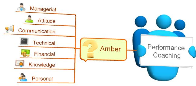 Performance coaching amber