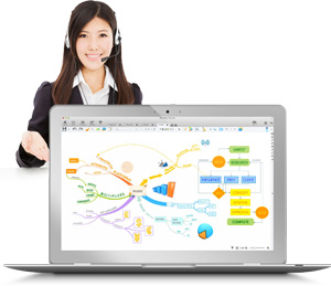 Online one-to-one iMindMap training